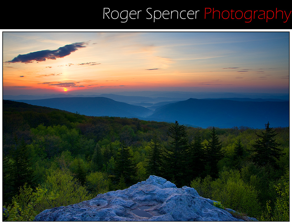 Roger Spencer Photography